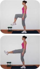 flexion-extension